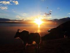 西藏尼泊尔11天10晚游记