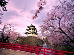 [成都出发]<浪漫日本>日本本州双古都温泉六日游(东京+大阪)