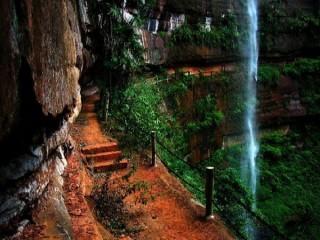 泸州佛宝森林公园